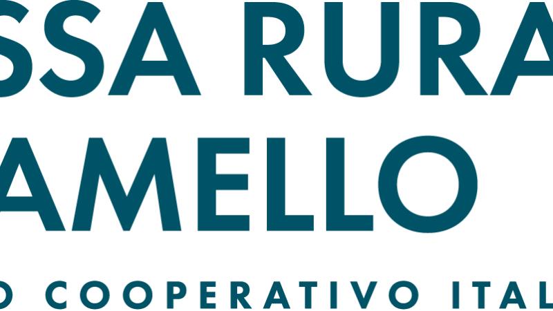 CASSA RURALE ADAMELLO BCC: Un impegno concreto per supportare le imprese e le famiglie