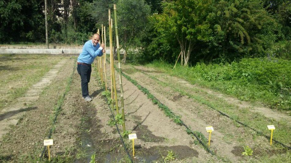 Agraria.org e Marco Salvaterra: Storie trentine   Agricoltura e informazione…