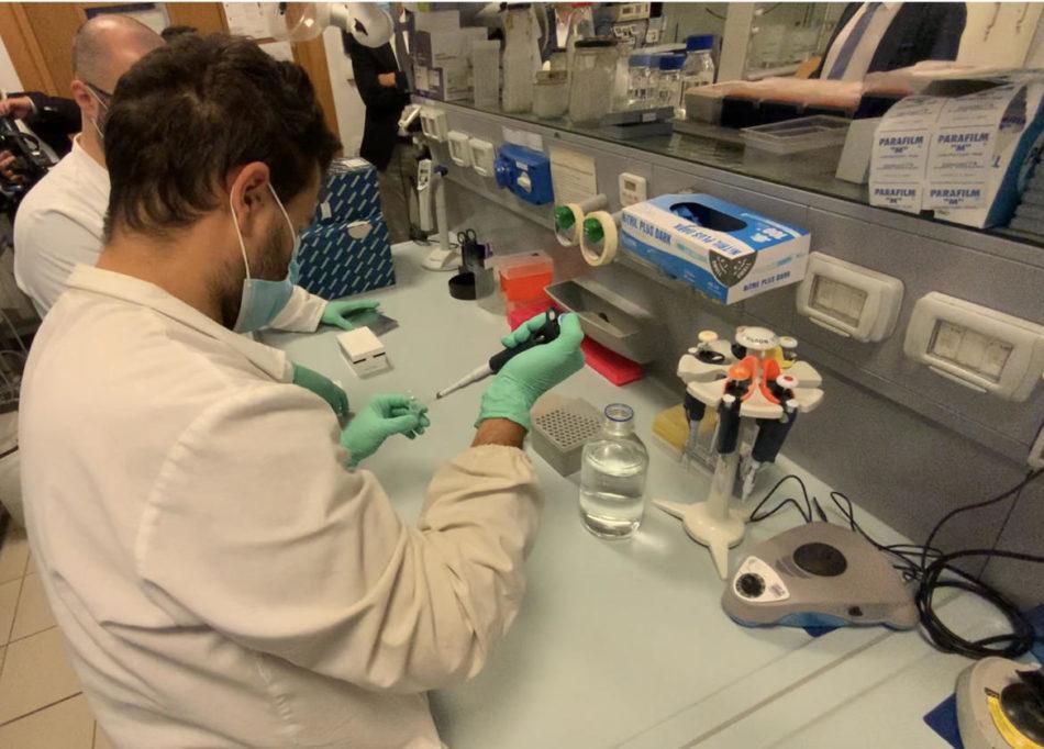 Aggiornamento situazione Coronavirus in Trentino – 18 giugno 2020: l'aggiornamento dal rapporto odierno di Apss
