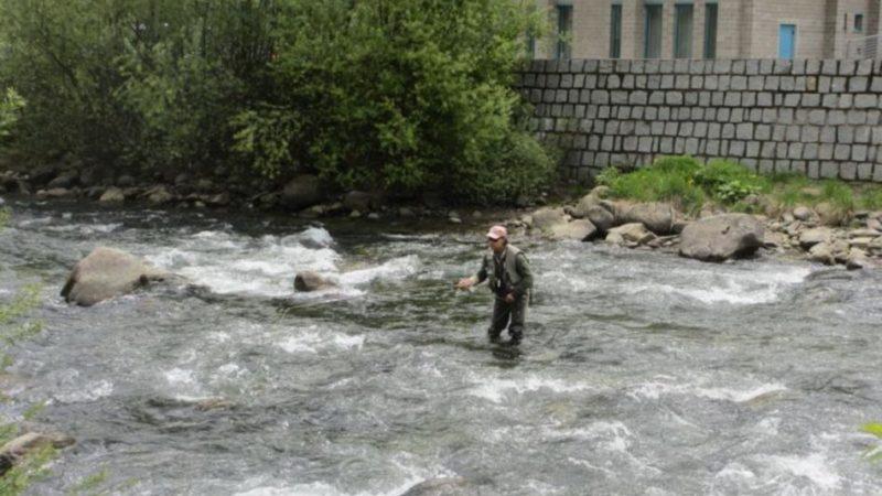221 partecipanti al primo corso online di abilitazione alla pesca, si replica il 13 luglio