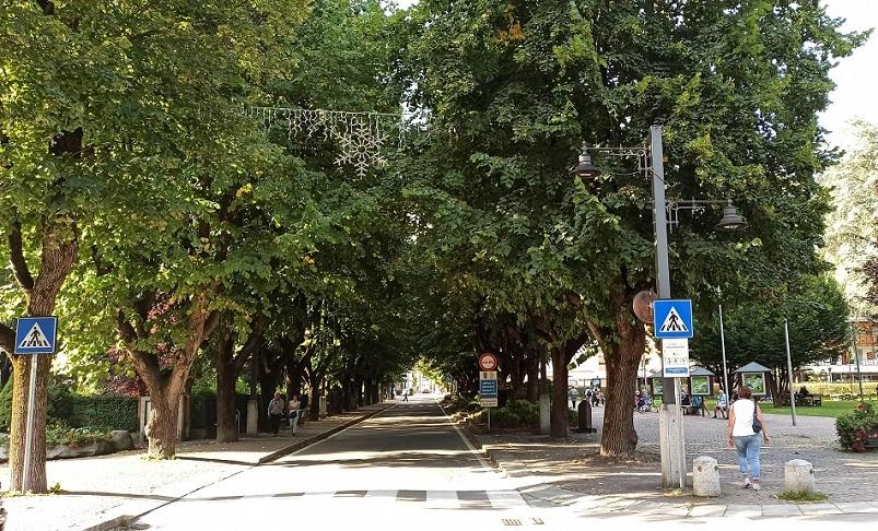 Viale di Pinzolo - 2020