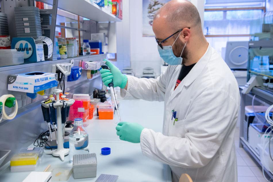 10 nuovi decessi. Oltre 3000 tamponi. 62 positivi al molecolare, 153 all'antigenico. 256 guariti. Vaccini: superate le 8.000 dosi somministrate