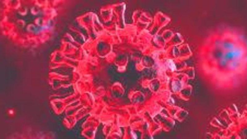 Aggiornamento situazione Coronavirus in Trentino – 29 settembre 2020: oggi 13 casi positivi