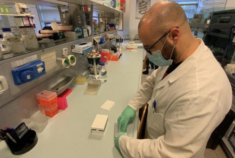 Aggiornamento situazione Coronavirus in Trentino – 1 dicembre 2020: 156 nuovi positivi con 2.026 tamponi processati; 8 i nuovi decessi