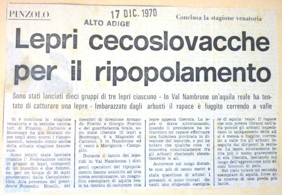 Lepri cecoslovacche per il ripopolamento