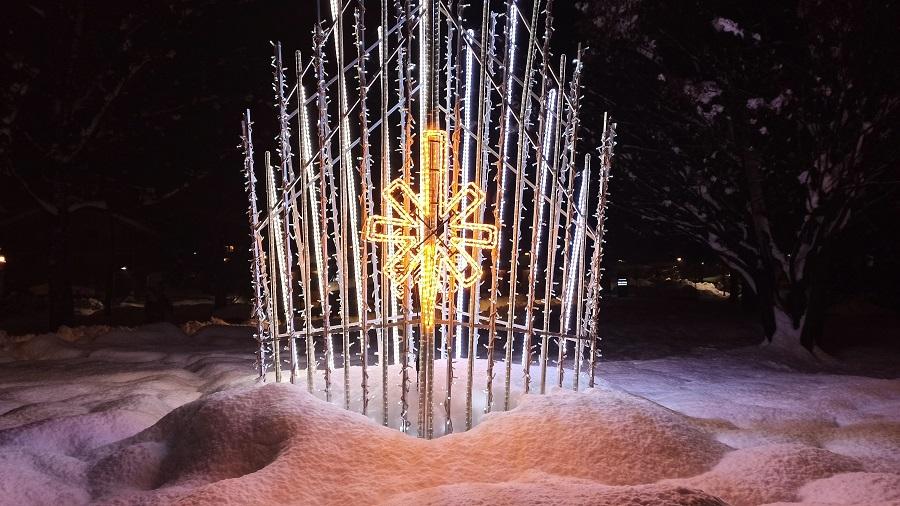 Luminaria natalizia al parco Ciclamino