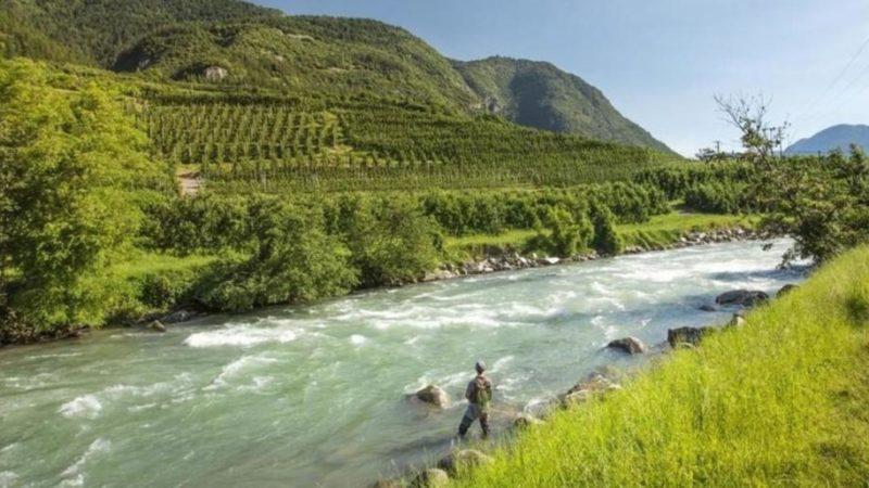 Pesca: un nuovo regolamento provinciale per aggiornare la materia