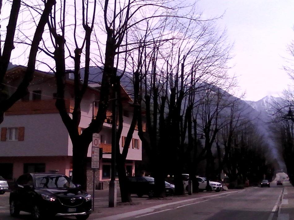 I tigli lungo corso Trento