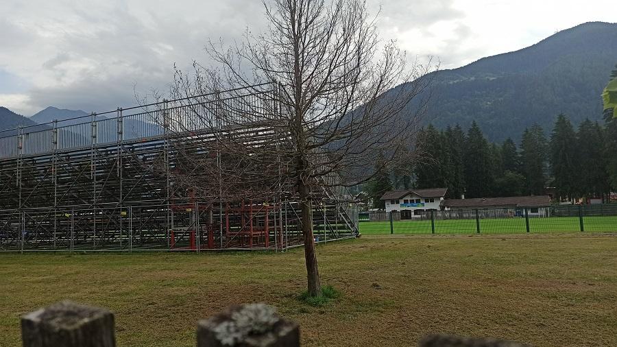 Tiglio secco dietro la tribuna del campo da calcio