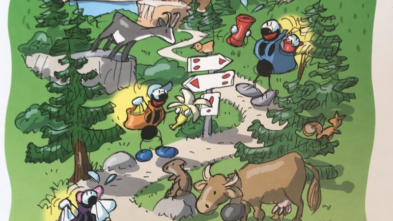 """""""Le formiche sui sentieri"""""""